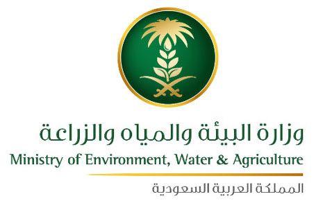 البيئة و البلديات تنجزان 90% من اعمال وادي الاديرع  خلال 60 يوم