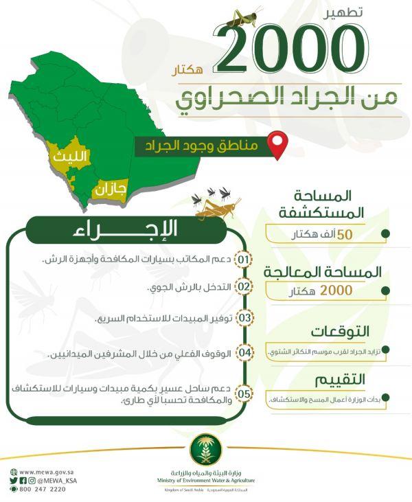 آل الشيخ يرأس وفد المملكة لأعمال المؤتمر الثلاثين للمجلس الأعلى للشؤون الإسلامية