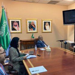 إعمار اليمن والفاو  يبدآن مكافحة الجراد الصحراوي باليمن